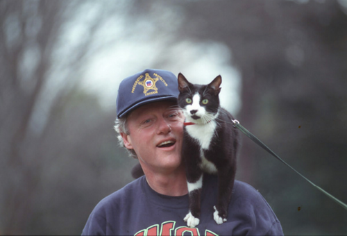 cuteboyswithcats:  bill clinton and his cat, socks. -mareofthesea  socks has a harness and leash like ella! adorable.