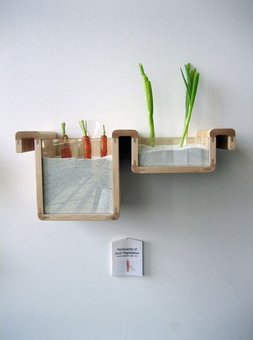 "Fantastic, eco-friendly approach to traditional food storage. This study, (or conceptual system) designed and implemented by Jihyn Ryou, explores food in its natural state. Everything from rooted vegetables (as seen above) to ""breathing eggs"". An amazing look beyond the common refrigerator - and an innovative solution that breaks all the rules. Read more about the study here. - Team Forrage"