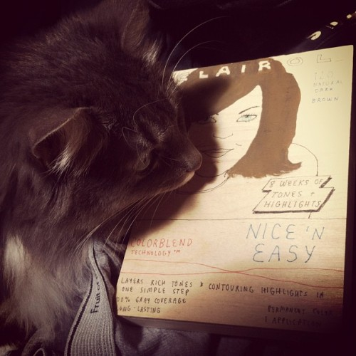 Pixel examines my Cassie Ramone painting.  (Taken with instagram)