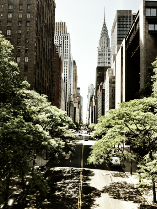 columnsofcreation:  The canyon on 43rd street.