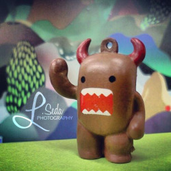 """He will rule the land with an iron fist."" Another in my Domo Instagram series."