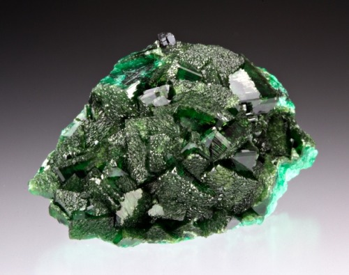 Adamite from Namibia by Dan Weinrich