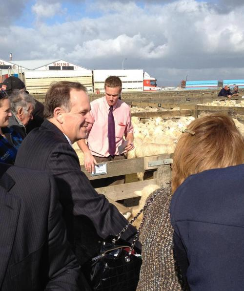 John Key looks at sheep.