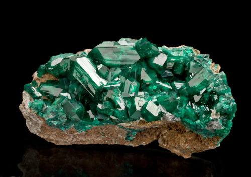 mineralia:  Dioptase from Namibia by The Arkenstone