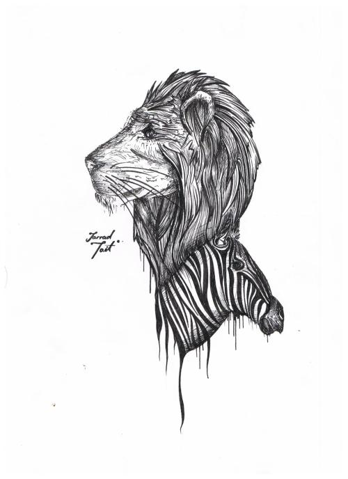 Lion And A Zebra.  By Myself.