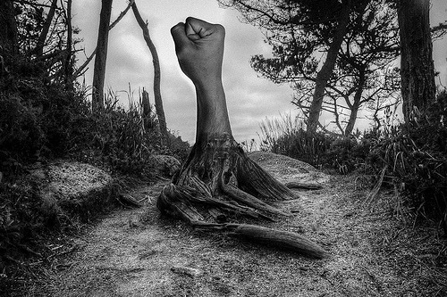 Tree Of Arms (by Guerrewhoa) Inspired by Jerry Uelsmann