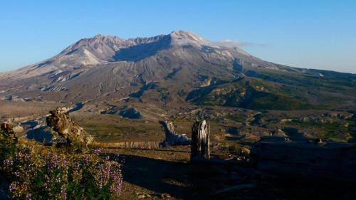 "May 18, 1980: Mount St. Helens Erupts On this day in 1980, Mount St. Helens in Washington State erupted as a result of an earthquake. One of the greatest natural disasters of our time, the eruption killed 57 people, sheared 1,300 feet off the summit of the mountain, and turned a pristine forested landscape into a barren, lifeless wasteland. 30 years after the massive eruption…could it happen again? Watch NOVA's ""Mt. St. Helens: Back From the Dead"" to find out."
