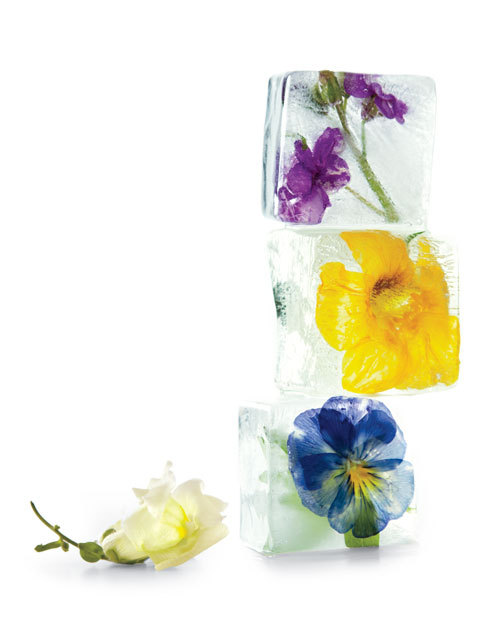 Floral Ice Cubes (tutorial)