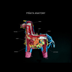 Piñata Anatomy by Carmichael Collective