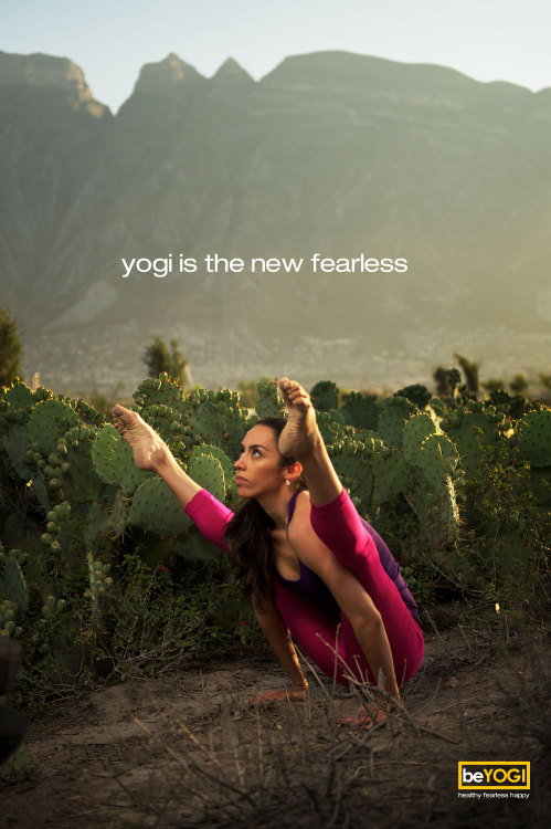 Yogi is the new fearless.