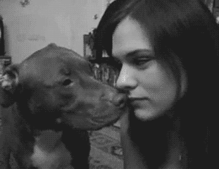Dog Vs. Girl Tongue War [Click to activate] She lost the war, but she got a few licks in.
