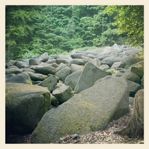The sea of rocks  (Taken with instagram)