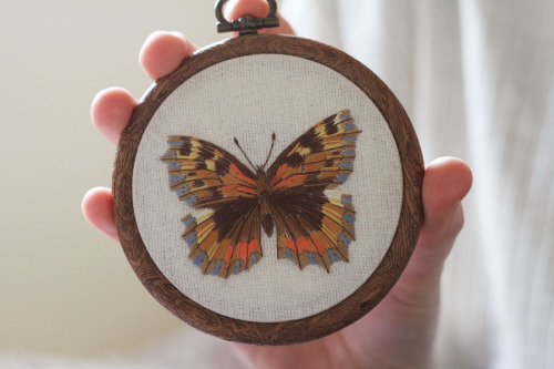 Tortoiseshell butterfly embroidery, it's been far too long since I did one of these! Check it out in my Etsy shop