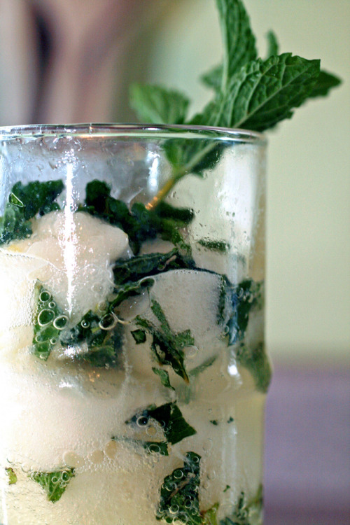 saltairandfarm:  Champagne Cocktails with Mint & Lemon Sorbetmakes 1 cocktail 2 t fresh mint leaves, muddled or finely chopped2 large scoops lemon sorbet1/3 c vodka3/4 c champagne or sparkling wine In a tall glass, place a pinch of mint. Add one scoop lemon sorbet, another pinch mint and the other scoop sorbet. Pour in vodka, then top with champagne and the rest of the mint. Garnish with a mint sprig.  must try. asap.