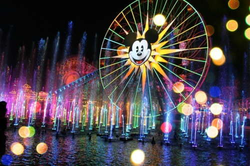 The wonderful world of color :) MCWfilm.   http://mcwfilm-photography.tumblr.com/
