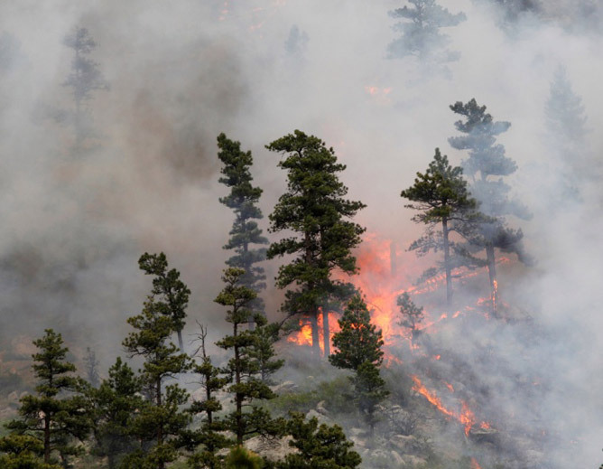 A camper has been ticketed for starting Hewlett fire in Colorado with alcohol-fueled stove A Fort Collins man whose cookstove sparked the Hewlett Fire has been issued a citation by federal authorities. James J. Weber, 56, was issued a citation for causing timber to burn without a permit.  Weber could face up to $325 in fines and fees for the citation. The federal government will also pursue civil restitution.