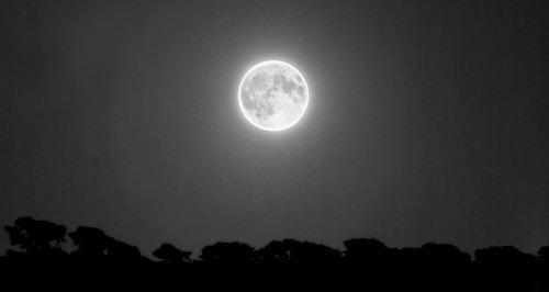Moon black&white (by whelan b)