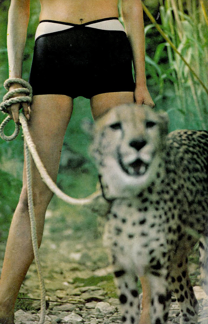 theyroaredvintage:  Photo by Helmut Newton, 1966.