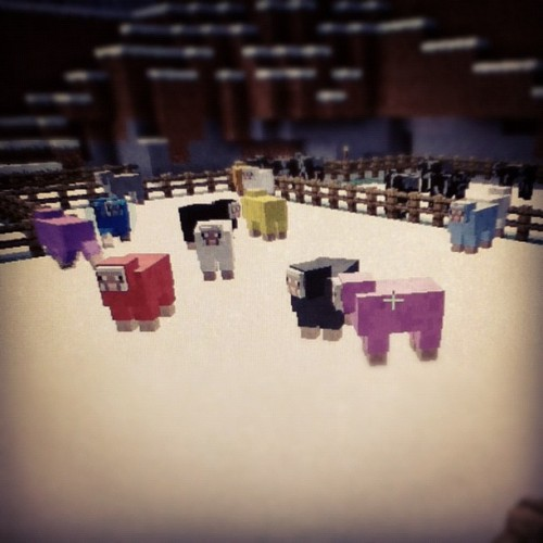 #minecraft #sheep #farm #gaming (Taken with instagram)