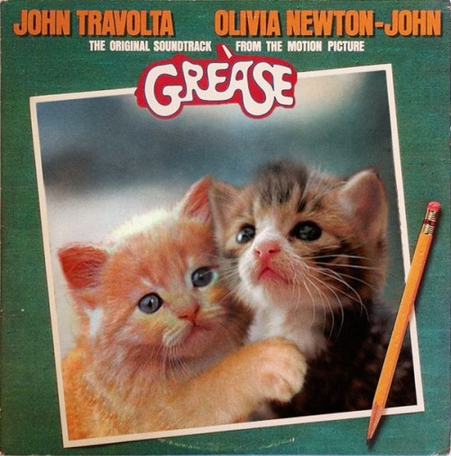 thekittencovers:  Squees (with John Tabbyolta and Olivia Mewton John)
