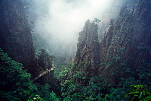 view-earth:  Huangshan (by Broksd)