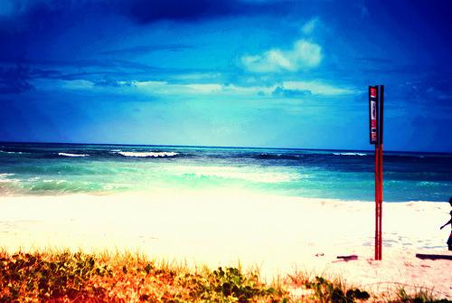 The ocean is where I belong byLucas Joseph