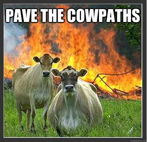"2 bewildered looking cows standing in a field. behind them is a huge fire. Text says ""Pave the cowpaths"""