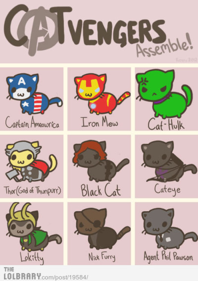 thebestdailylols:  Catvengers ASSEMBLE!Follow this blog for the best new funny pictures every day