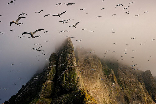 allthingseurope:  St. Kilda, Scotland (by JC Richardson)
