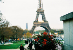 o lovely paris i wish i could go there AGAIN