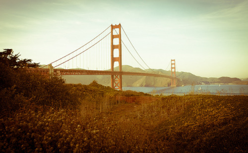 Golden Gate Bridge 1.14.2012 on Flickr.