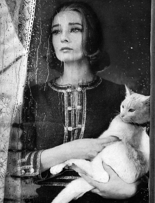 Richard Avedon, photograph of Audrey Hepburn
