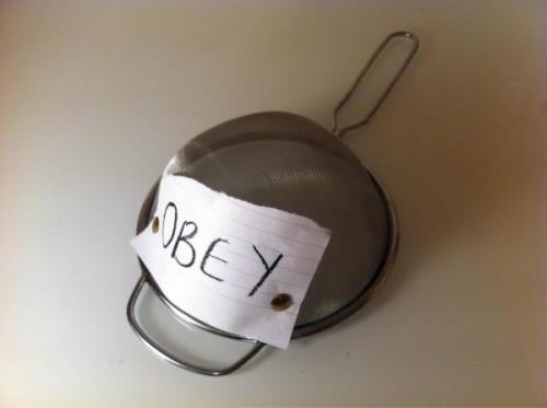 my new obey snapback