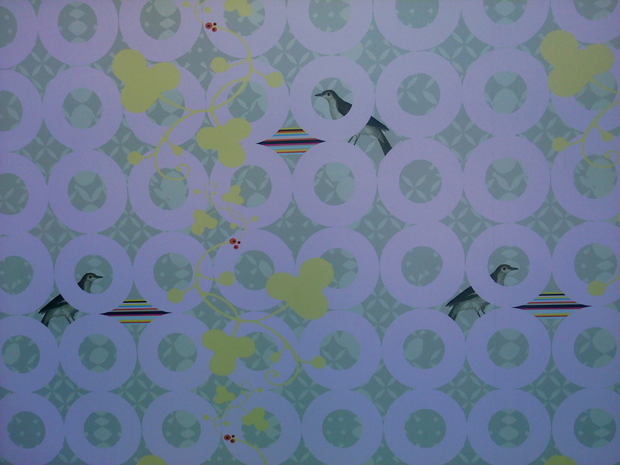 super cute wallpaper in the new Dixie Donuts!