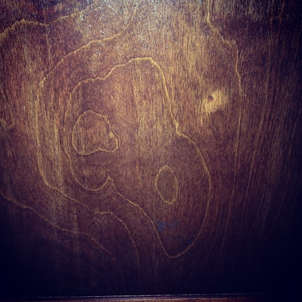 bird skull wood grain (Taken with Instagram at Walkers Coffee and Pub)
