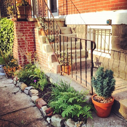 my little #urban #garden (Taken with Instagram at Downtowm Columbus)
