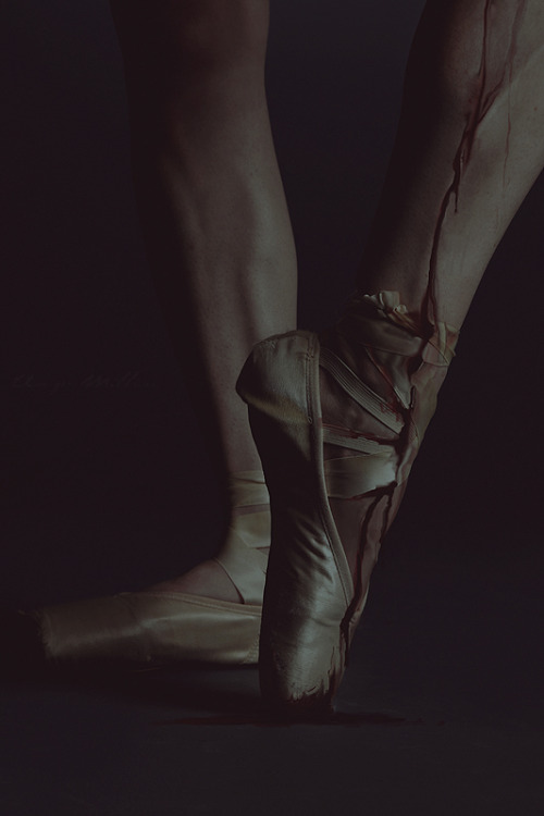 fiore-rosso:  until my veins run dry - anja millen.