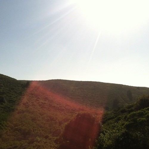 Le tour encore (Taken with Instagram at San Bruno Mountain State Park)