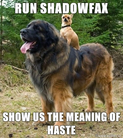 run shadowfax.