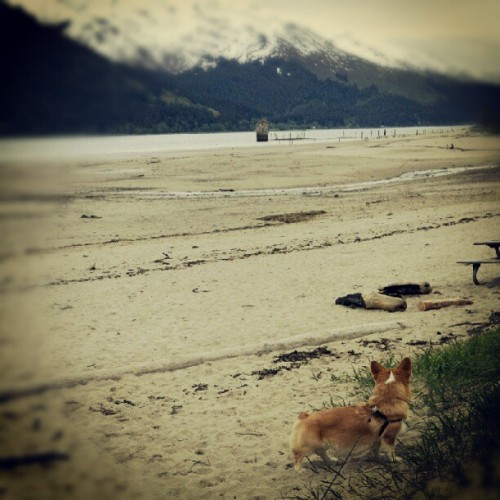 Sandy Beach, Douglas, AK (Taken with instagram)