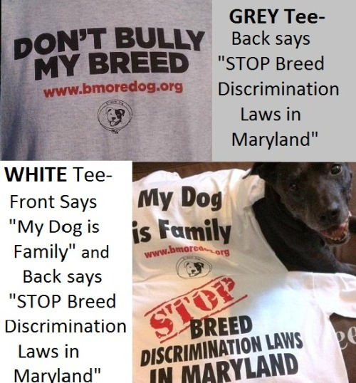 B-More Dog's TWO new Stop Breed Discimination Laws in Maryland shirts will be available Sunday, May 20 at Pit Bulls on Parade. Get yours for $15 ($10 for paid B-More Dog Members). Starting Monday,  May 21, all remaining shirts will be available for purchase through Paypal, plus $5.35 for Priority Shipping.  Contact b_moredog@yahoo.com for details.
