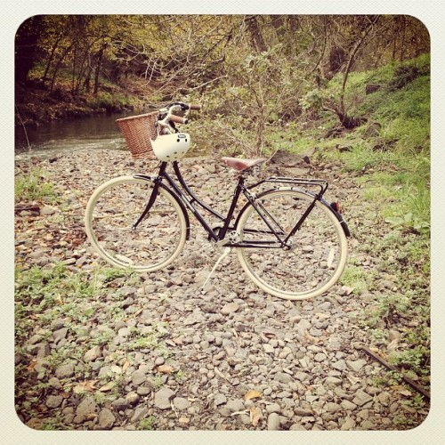 Taking my bike to visit Merri Creek - how beautiful is Melbourne!