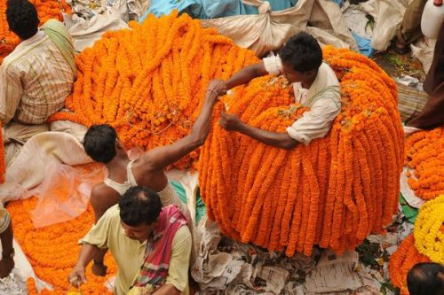 Man sells Marigold flowers in Calcutta, India. Photo by Nilanjan Bhattacharya.