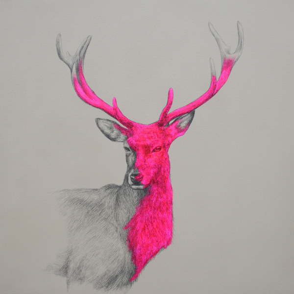 "fuckyeahpsychedelics:  ""Wild Thing"" by Louise McNaught"