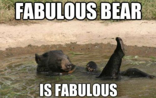 jose-ariel-cuevas:  Fabulous bear.  This is why I bathe.