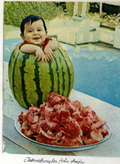 simplyrav:  A Kurdish baby in a giant watermelon, this picture was taken in Amed (Diyarbekir) North Kurdistan North Kurdistan is known for its famous delicious watermelons.