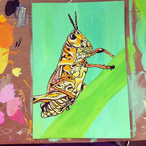 ponyann:  Working on a small grasshopper illustration for an old friend's schoolproject. The project is about different interpretations of beauty. (Taken with instagram)