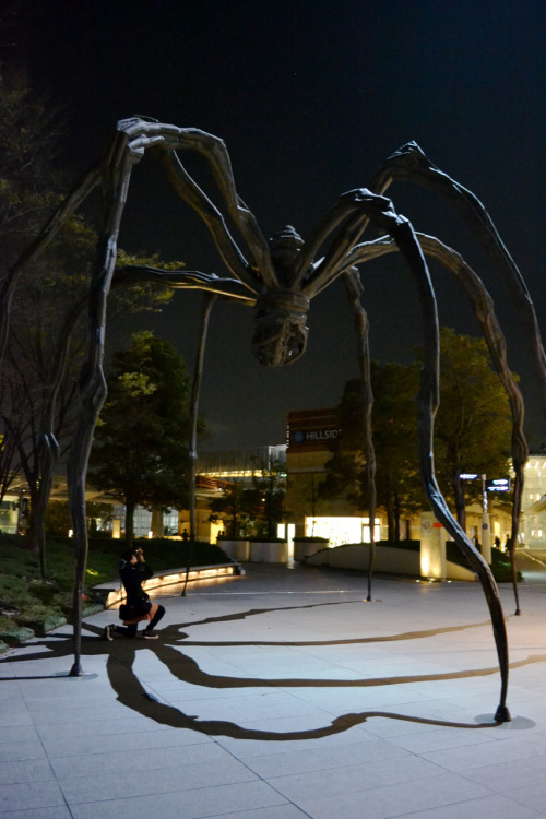 Spider vs photographer in Roponggi, Tokyo. That's all for me this week. I'll be sitting for my orthopedics exam this Friday, then a week off that will be spent camping in a national park near Kuching and delivering cutie patootie babies into the world (a prerequisite of 15 babies so that I can graduate. Let's hope it was mating season 9 months ago!). Have a good week! Much love.