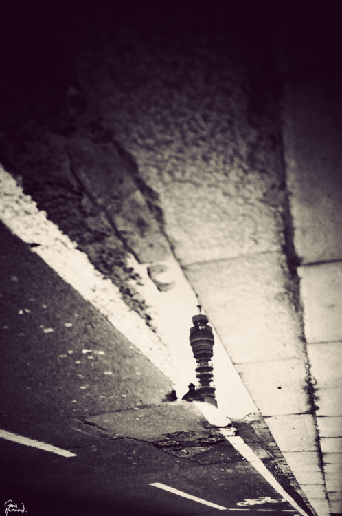 gavinhammond:  The BT Tower in a skinny puddle.