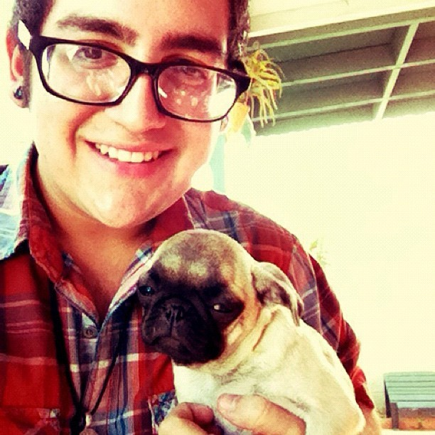 I wanted to steal this little #pug #puppy SO BADLY. 😭 #dogsofinstagram #puppiesofinstagram #adorable #love #instagram #me #gay #boy #selfportrait (Taken with instagram)